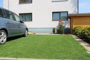 Suregreen grass reinforcement