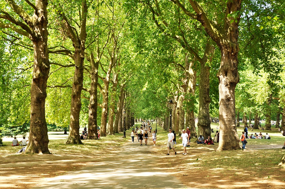 Green Park, West London